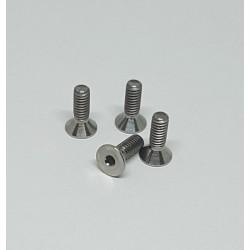 G12 Titanium Front End screws